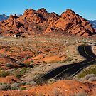 Valley of Fire by Dave Hare