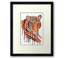 Crying Tiger Framed Print