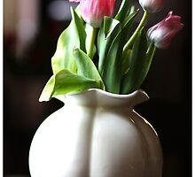Beauty Tulips in a Vase by pawelstp