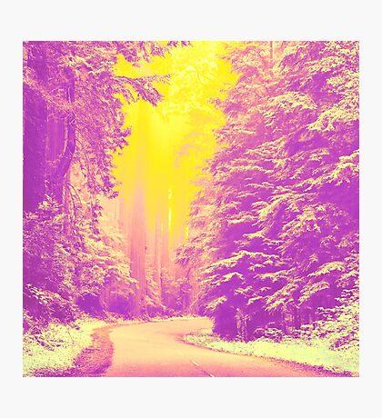Road to Sun Photographic Print