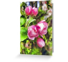 Pink Blossoms of Spring Greeting Card