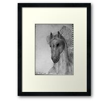 """Spike"" 2 unfinished Framed Print"