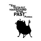 Behind in the past - Pumbaa by ElinCST