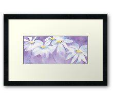 Daisies and sunbeams Framed Print