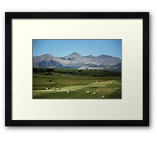 Farming, Foothills and Mountains Framed Print