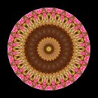 Pink Flame Mandala by Michael Matthews