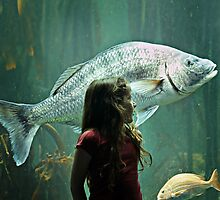 Mila and the Big Fish by micklyn