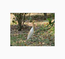 Cattle Egret in breeding plumage Unisex T-Shirt