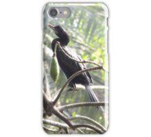 Little Cormorant on a tree iPhone Case/Skin