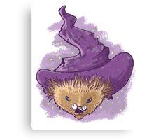 A little Hedgehog magic Canvas Print