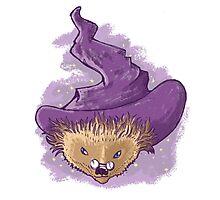 A little Hedgehog magic Photographic Print