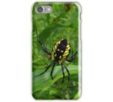 Dream Weaver iPhone Case/Skin