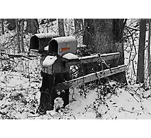 Snowy Mailbox SC Photographic Print