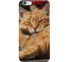 Bored cat iPhone Case/Skin
