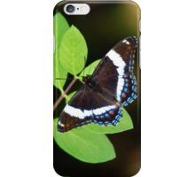 White Admiral Butterfly iPhone Case/Skin
