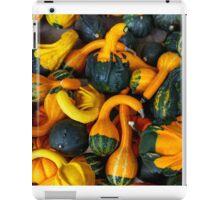 Colors of Fall iPad Case/Skin