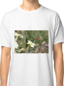 Large Bee-fly (Bombylius major) on Primrose Classic T-Shirt