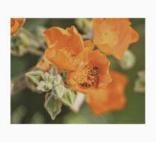 Honey Bee With Yellow Orange Flowers One Piece - Long Sleeve
