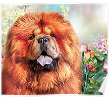 Chow Chow Painting  Poster