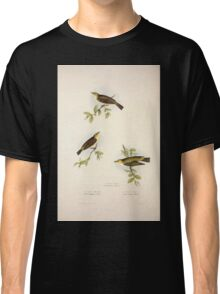 John Gould The Birds of Europe 1837 V1 V5 131 Willow Wren Classic T-Shirt