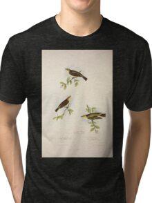 John Gould The Birds of Europe 1837 V1 V5 131 Willow Wren Tri-blend T-Shirt