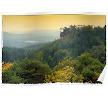 palatinate forest Poster