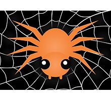 Halloween Spider Photographic Print