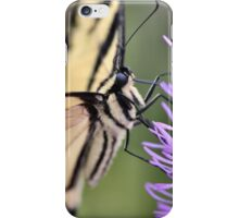 Patient Swallowtail iPhone Case/Skin