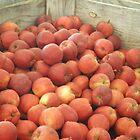 Apples by AuntieBarbie