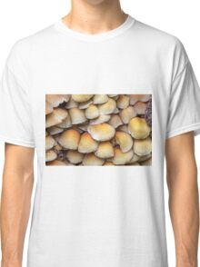 Sulphur Tuft mushrooms (Hypholoma fasciculare) Classic T-Shirt