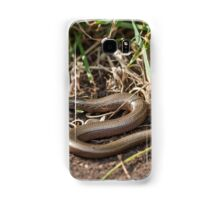 Adult Slowworm (Anguis fragilis) with young babies among dirt and scrub Samsung Galaxy Case/Skin