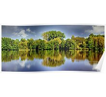 forest mirroring Poster
