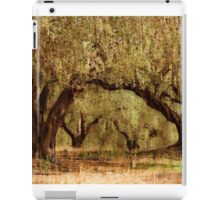 the arch iPad Case/Skin
