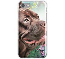 American Staffordshire Terrier Painting  iPhone Case/Skin