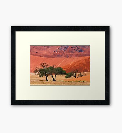 sossusvlei desert with trees Framed Print