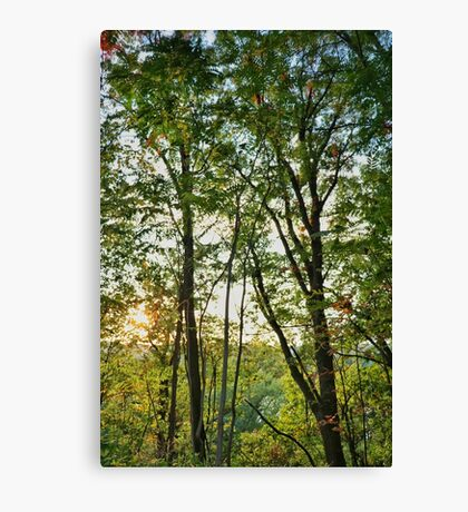 Pennsylvania Landscape #2 Canvas Print