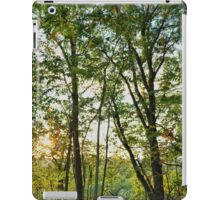 Pennsylvania Landscape #2 iPad Case/Skin