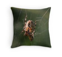 Successful Spider Throw Pillow
