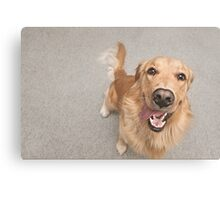 Happiest dog on earth Canvas Print