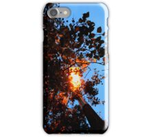 Autumn Glow iPhone Case/Skin