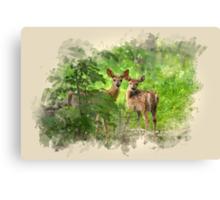 Deer Fawns Watercolor Art Canvas Print