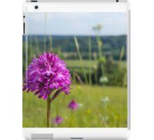 Pyramidal Orchid (Anacamptis pyramidalis) on chalkhill downs iPad Case/Skin