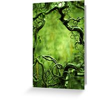 Curly tree branches  Greeting Card