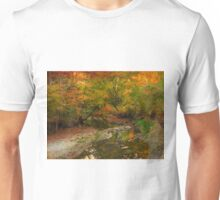 Beauty in silence T-Shirt