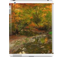 Beauty in silence iPad Case/Skin