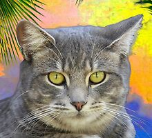 Kitty Kat Under the Palms  by Heather Friedman