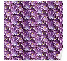Watercolor Magenta Pink Hydrangea Blossoms Pattern Poster