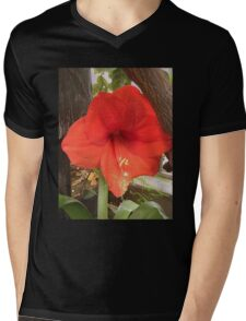 Amaryllis Flower Mens V-Neck T-Shirt