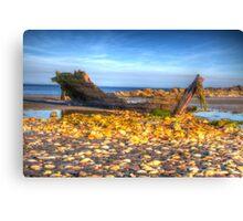 Ship Wreck On A Beach Canvas Print