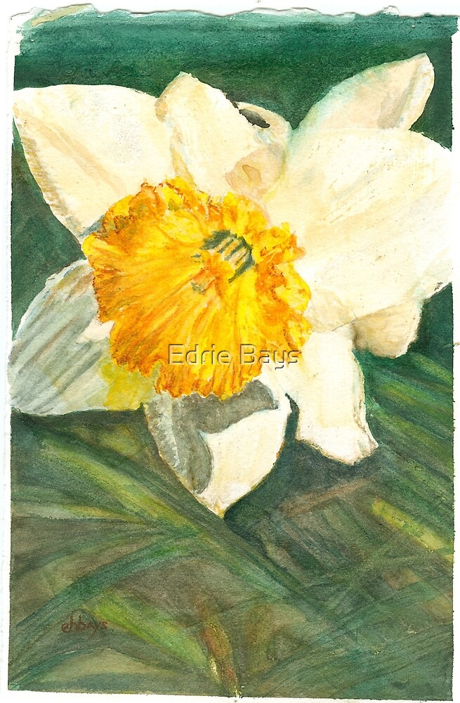 Sign of Spring by Edrie Bays